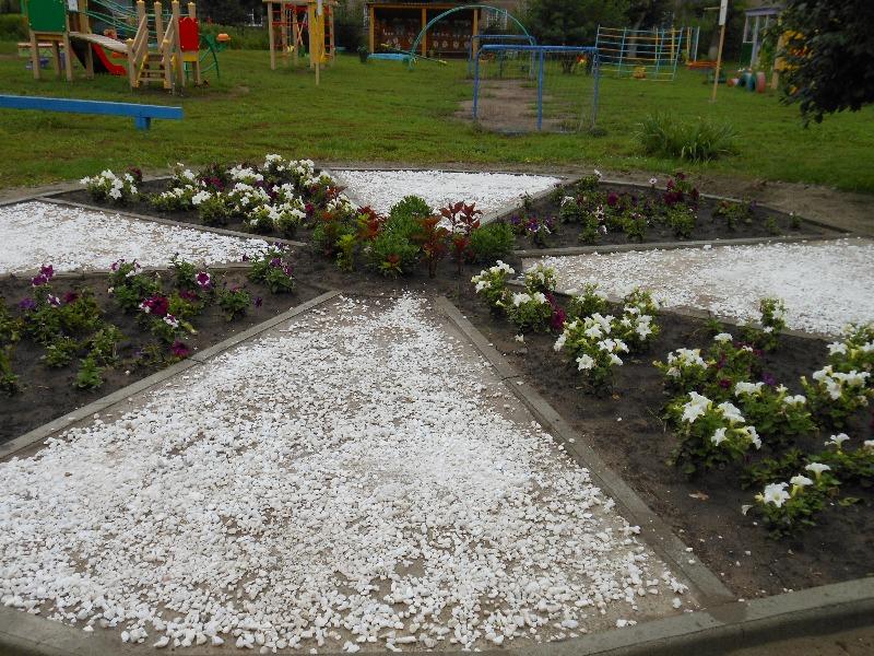 Клумба - украшение нашего двора