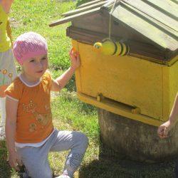 Так вот где живут  пчелки)))